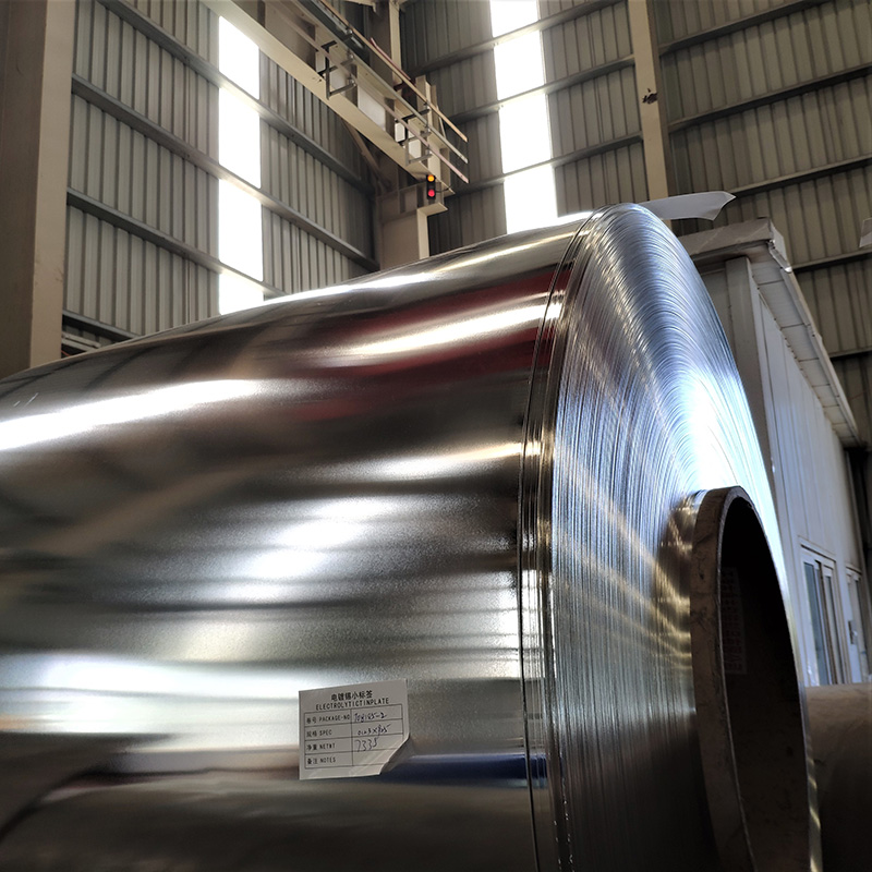 Stainless Coil